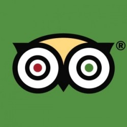 Trusted Website - Trip Advisor