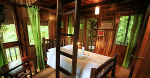 Tree House Arenal